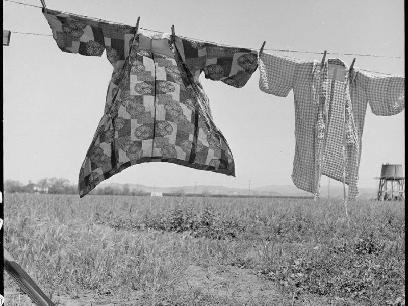 San Lorenzo, Californie. Jour de lessive, 48 heures avant la déportation des membres de cette communauté agricole du comté de Santa Clara.