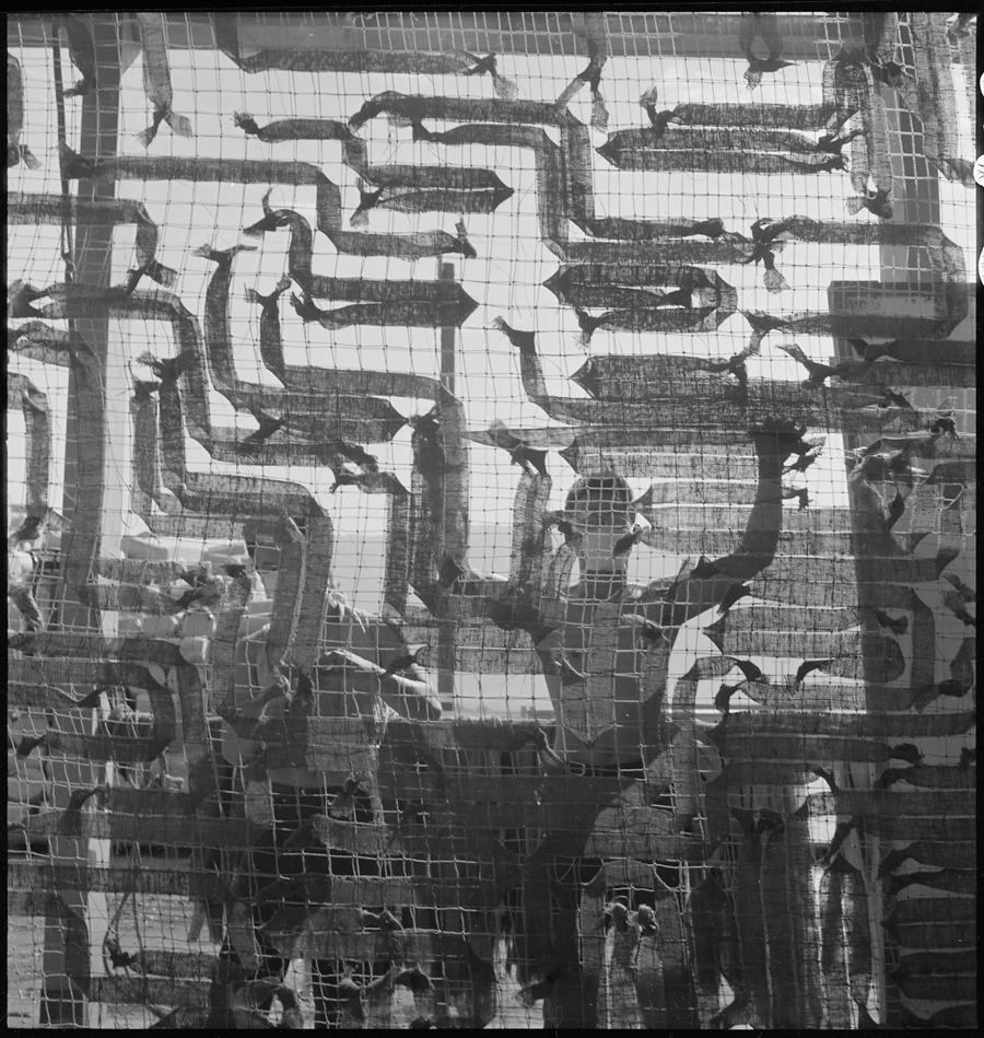 Centre de déportation de Manzanar, Californie. Déportés fabricant des filets de camouflage pour le département de la guerre. Les déportés d'ascendance japonaise furent ainsi mobilisés pour l'effort de guerre dans plusieurs des camps.